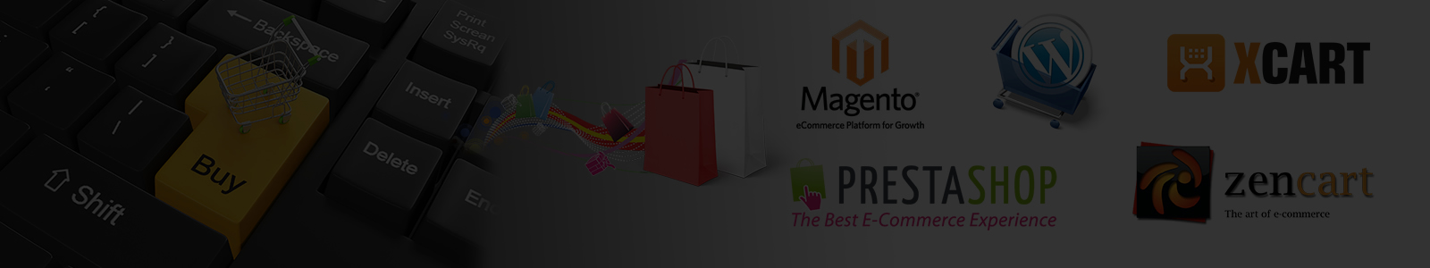 ECOMMERCE DEVELOPMENT 1600 x 300 px